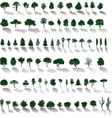 Trees with shadows vector | Price: 1 Credit (USD $1)