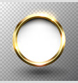 abstract shiny golden circle frame with space vector image