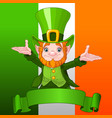 happy leprechaun vector image vector image