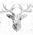 hipster animal realistic and polygonal deer face vector image vector image