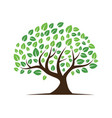 logos green tree leaf ecology nature vector image vector image