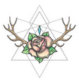 rose flower with antlers horns and gem mystic vector image