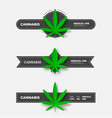 set medical cannabis badges with dark ribbons vector image vector image