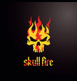 skull fire image vector image
