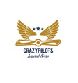 air pilots team retro airplane icon vector image