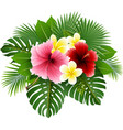 beautiful flowers and leaves vector image vector image