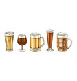 set hand drawn beer glasses vector image vector image