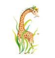 african giraffe animal realistic artistic drawing vector image vector image