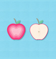 creative apple fruits and apples half vector image