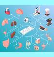 human organs isometric flowchart vector image vector image