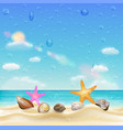 sea shell and starfish on a sand beach vector image vector image