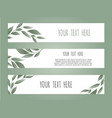 set botanic card with wild flowers leaves floral vector image vector image