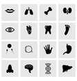 black anatomy icon set vector image vector image