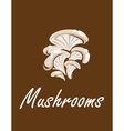 Bunch of oyster mushrooms with text Mushrooms vector image