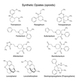 Chemical formulas of main full synthetic opiates vector image vector image