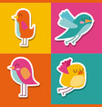 collection of cute colored birds lovely vector image
