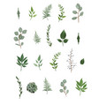designer elements set collection of green vector image vector image
