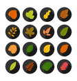 set of sixteen autumn leaves in circles vector image vector image