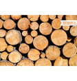 wood log background vector image