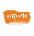 Autumn hand written inscription vector image