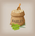 barley grain seed in the bag vector image vector image