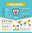 dental medicine health care infographic banner vector image