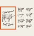 farm cattle bulls and cows vintage cards vector image