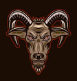 goat head with horns colorful vector image vector image