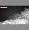 realistic fog mist effect smoke isolated on vector image