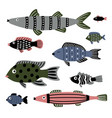 saltwater fishes set vector image vector image