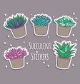 set of cartoon succulents stickers cute stickers vector image