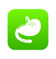 stomach icon green vector image