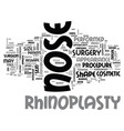 what is rhinoplasty text word cloud concept vector image vector image
