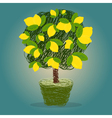 Lemon tree in a pot drawn in scribble style vector image