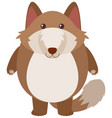 brown fox with happy face vector image vector image