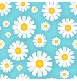 chamomile flowers seamless pattern blue background vector image vector image