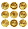 gold badges labels vector image vector image