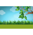 Scene with grass and tree vector image vector image