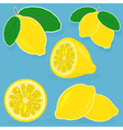 Set of lemon on blue background vector image