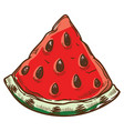watermelon slice with seeds cut berry for snack vector image
