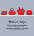 Women Handbags Display On Shelf vector image vector image