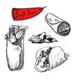 Burrito vector image