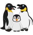 cartoon happy penguin family isolated on white bac vector image vector image