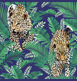 cheetah and leopards palm leaves tropic vector image vector image