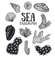 Grunge backgroung with sea treasures - corals vector image vector image