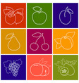 linear fruit berry icons vector image