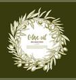 olive oil poster of olives branch wreath vector image