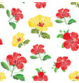 seamless pattern painted flowers fabric vector image vector image