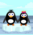 two penguins on an ice floe a vector image vector image