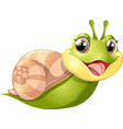 snail with mobil home vector image vector image
